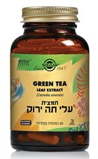 Green Tea leaf extract 60